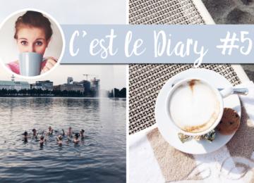 cest-le-diary-5