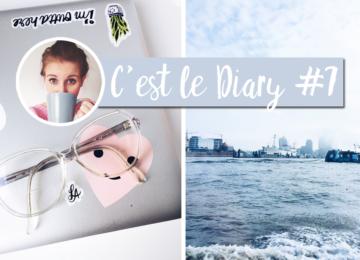 cest-le-diary-7